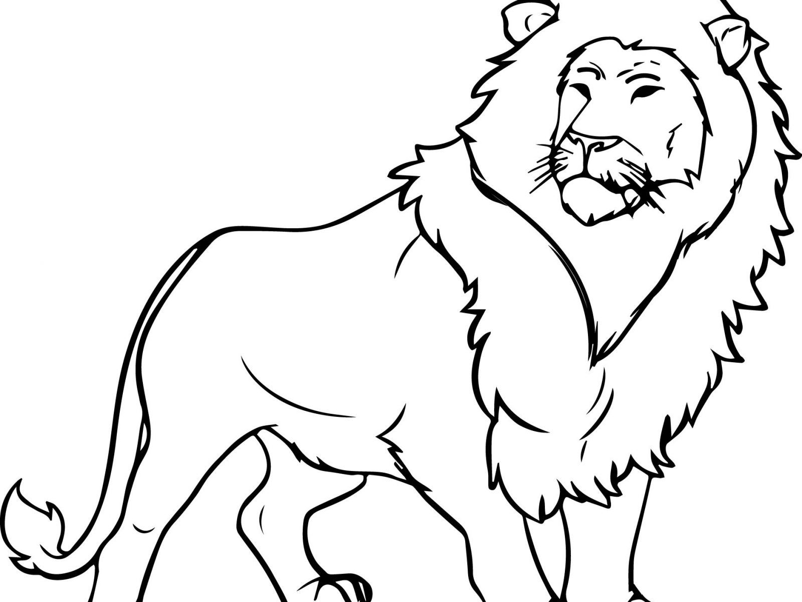 1600x1200 Marvelous African Lion Coloring Page Printable Animals For Pics