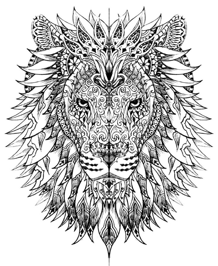 736x901 Stress Relief Coloring Pages Lion Printable
