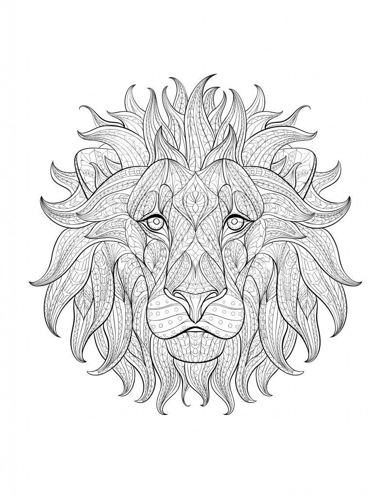 803x1024 Adult Coloring Page Lion Acpra