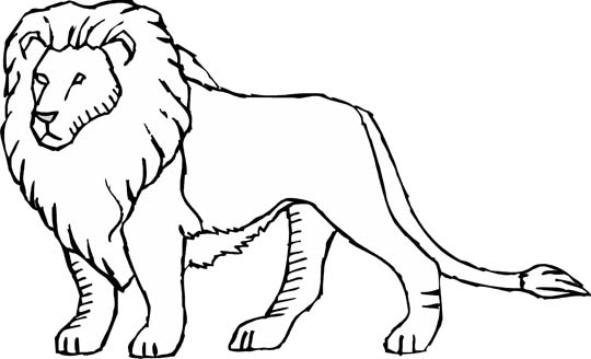 540x328 Colossal Pictures Of Lions To Color Coloring Pages Charming Lion