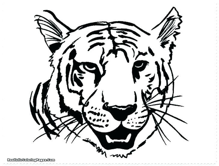 728x553 Lion Coloring Pages Printable New Lion Coloring Pages Awesome