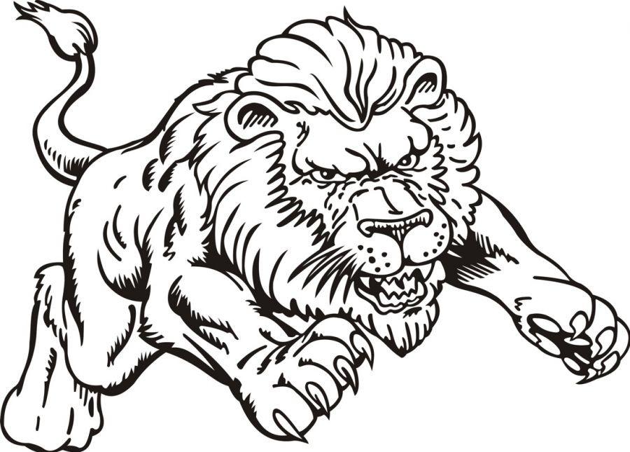 900x645 Lion Coloring Pages Printable Lion Coloring Pictures Lion Coloring