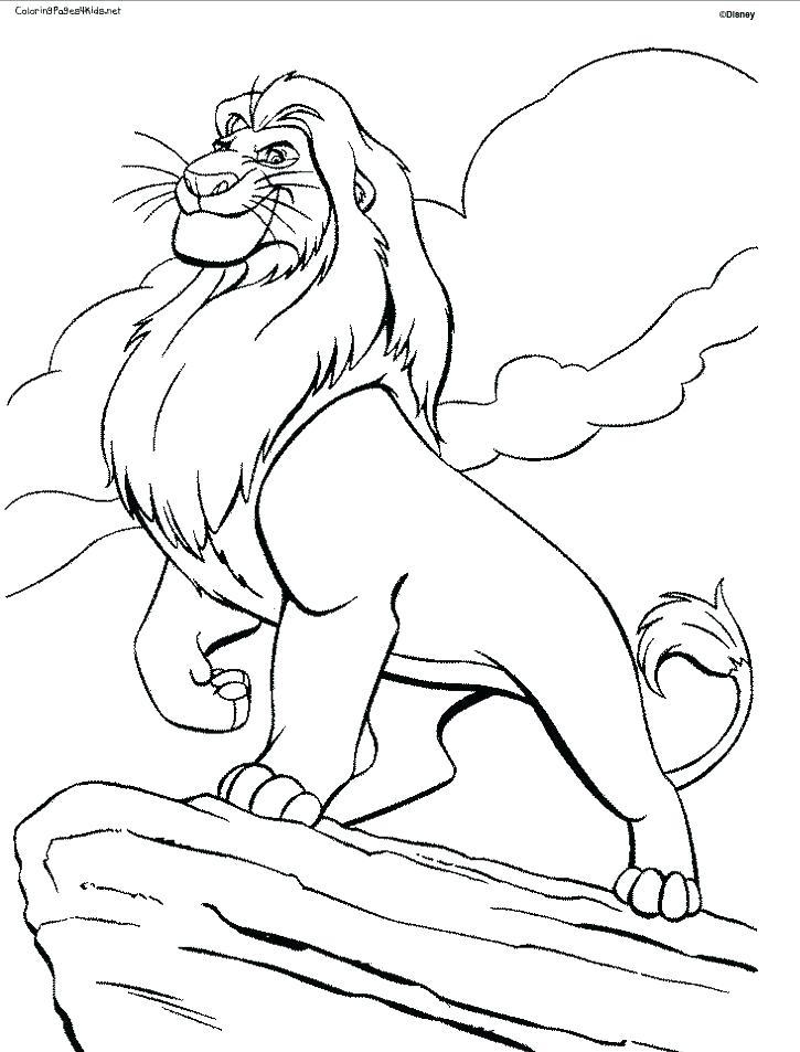 725x953 Lion Coloring Page Simple Lion Coloring Pages Print King Color