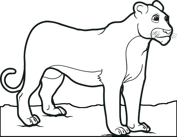 700x545 Lion Coloring Pages Printable Abstract Coloring Pages Lion