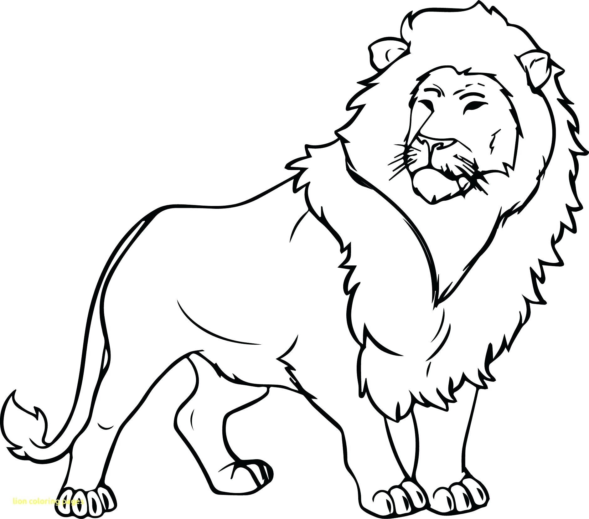 1881x1658 Lion Coloring Pages Printable Ribsvigyapan Com Extraordinary Lions