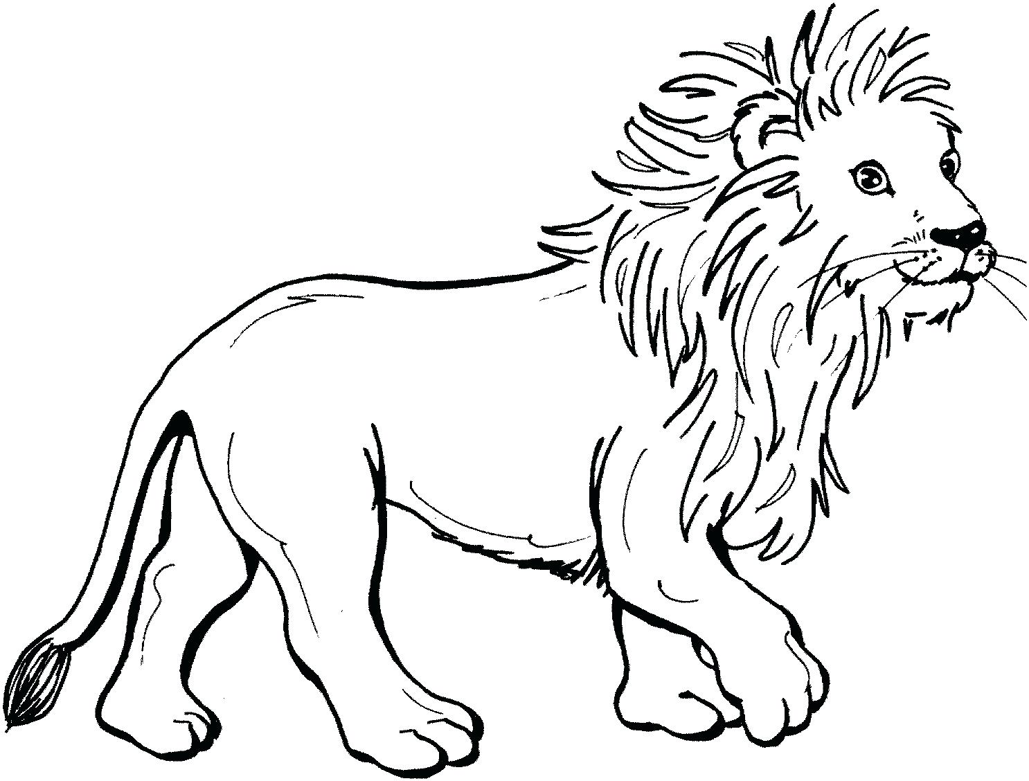 1486x1128 Cute Baby Lion Coloring Pages Pictures Cub Page Mountain Colouring