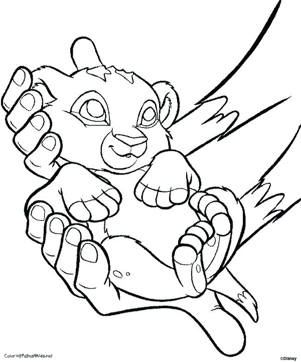 600x721 Baby Lion Coloring Pages Baby Lion Coloring Page Best Pages Images