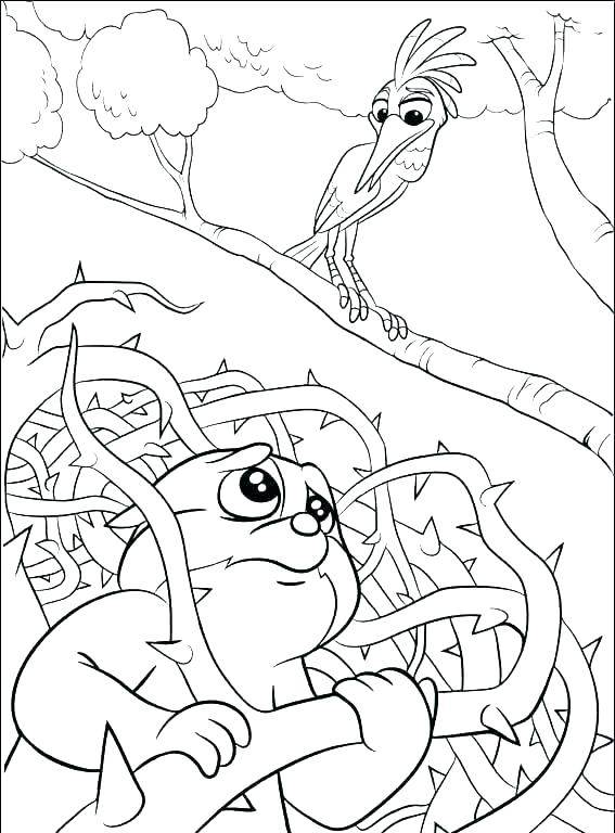 567x768 Printable Lion Coloring Pages For Kids Lion Face Coloring Page