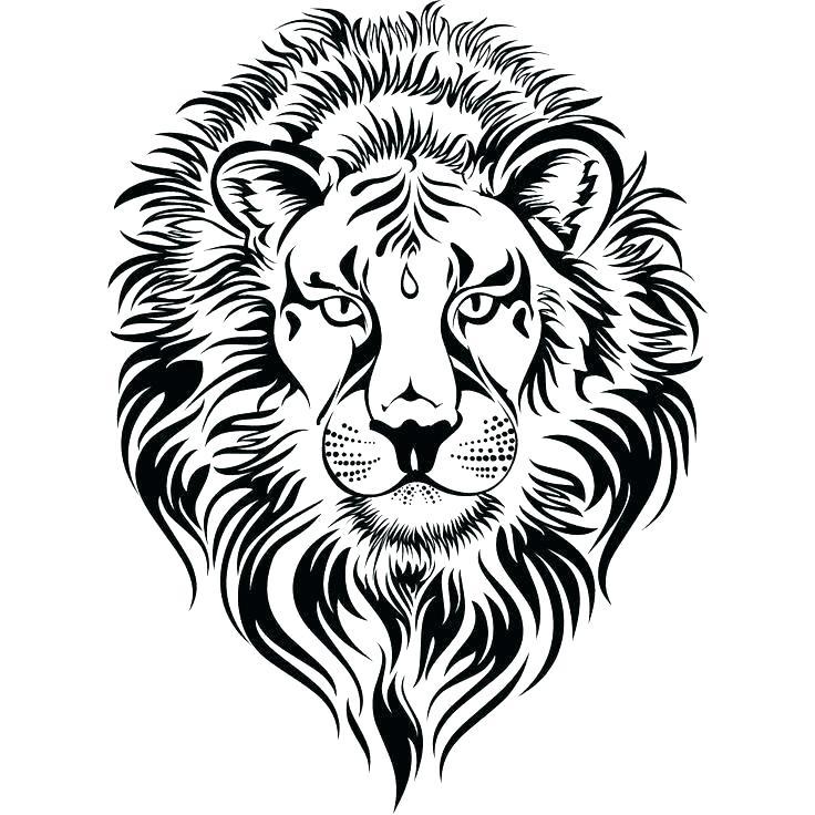736x736 Lion Face Coloring Page Lion Head Coloring Page Lion Head Coloring