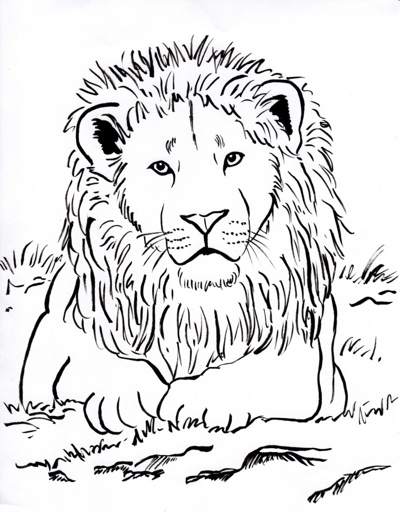 799x1024 Free Coloring Pages And Reference Pictures
