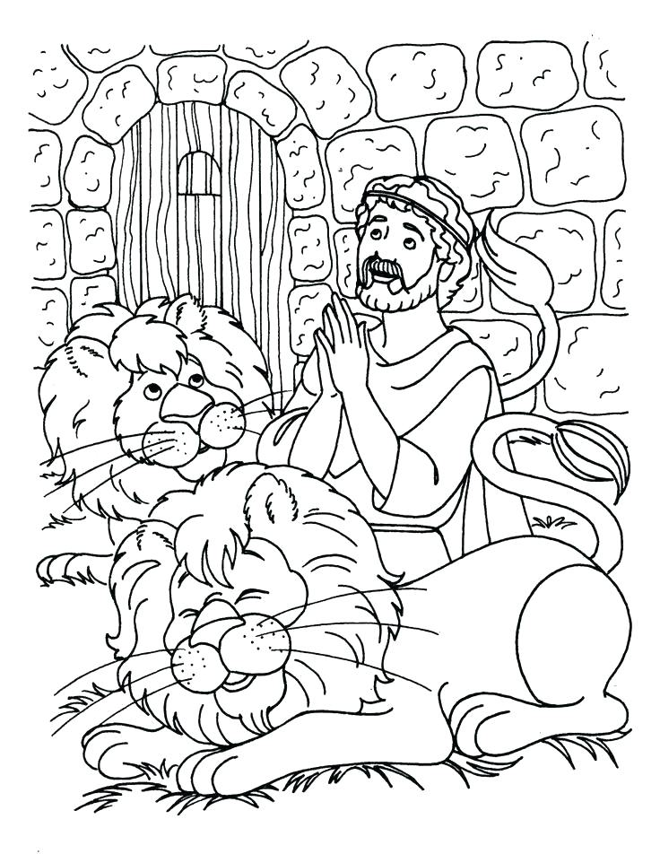 736x952 Lions Coloring Pages Lion Family Coloring Pages Lions Football