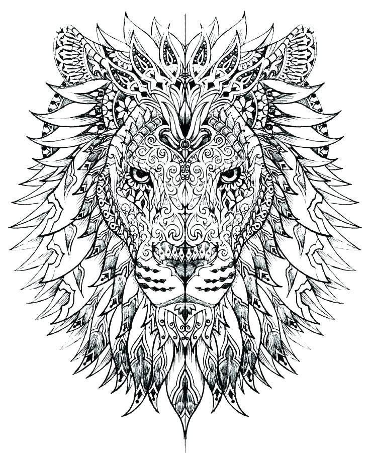 736x901 Coloring Pages Of Lions Lion Face Coloring Page Lion Head Coloring