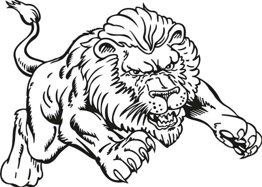 900x645 Coloring Pictures Of Lions Lions Coloring Pages Lion Color Page