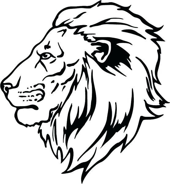 555x600 Lion Head Coloring Pages Lion Coloring Pages Lion Head Colour