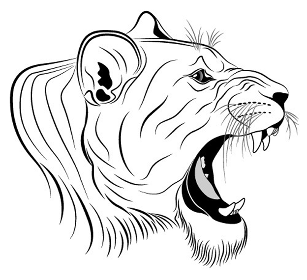 624x570 Roaring Lion Head Free Coloring Page Adults, Animals Coloring Pages