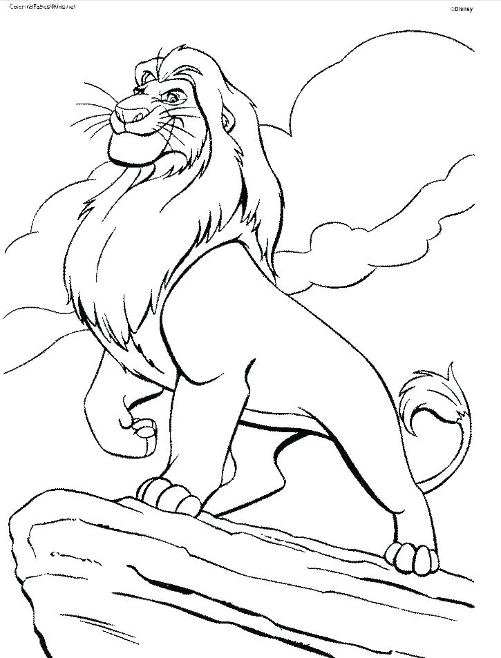 725x953 Lion King Printable Coloring Pages