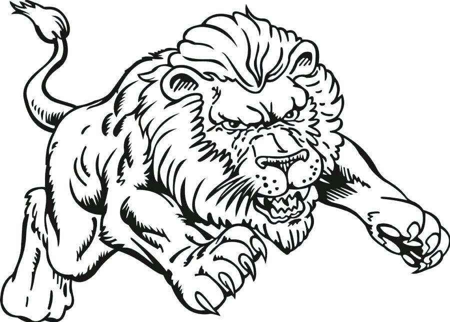900x645 Baby Lion Coloring Pages Lion Color Sheet Lion Color Page Lion
