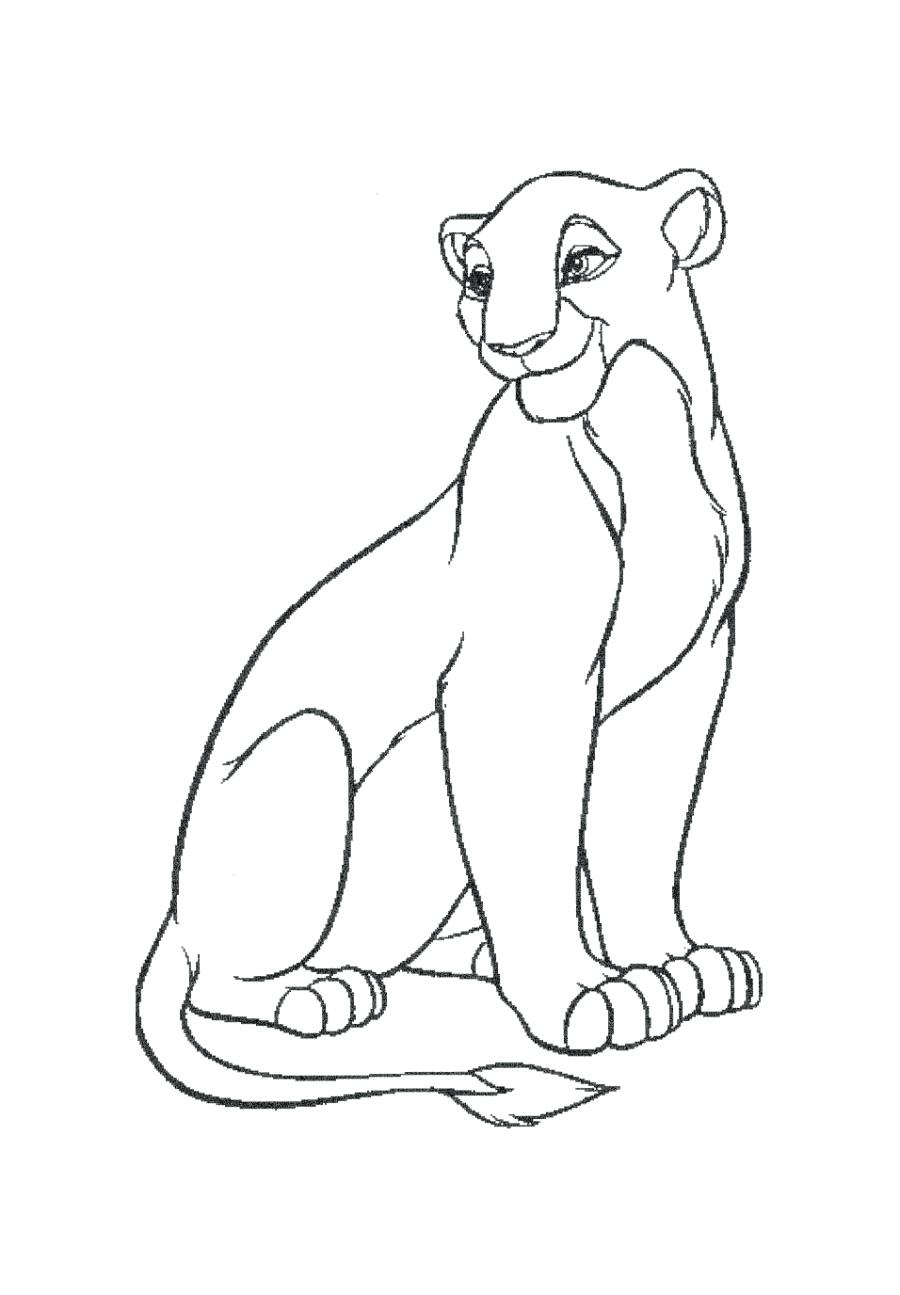900x1295 Fresh Lion Page To Color Design Printable Coloring Sheet