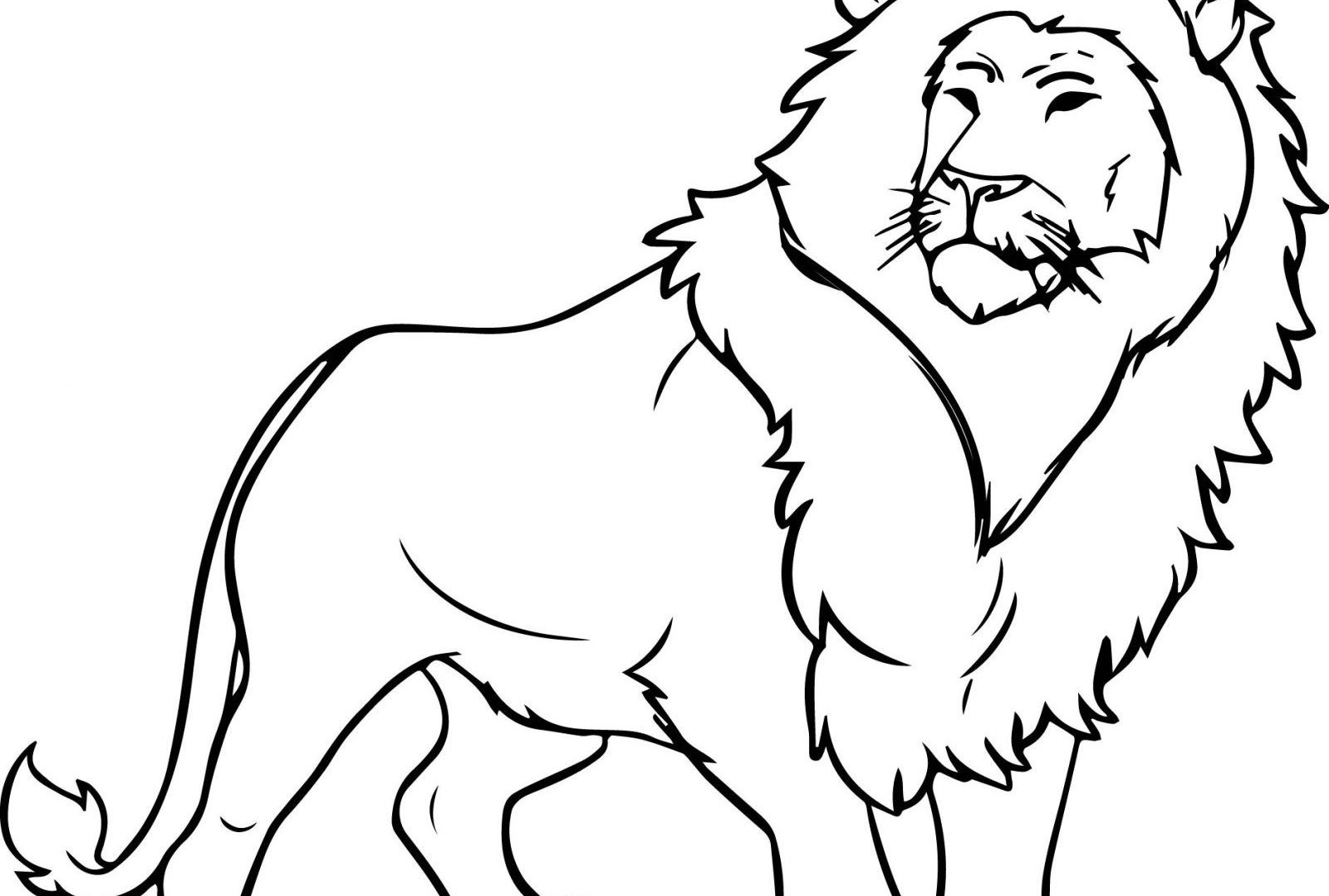 1600x1080 Impressive Coloring Page Lion Free Pages To Color Book Blank Sheet