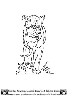 236x331 Lion Coloring Sheets Of Lioness With Cub Bycub Lion Coloring Pages