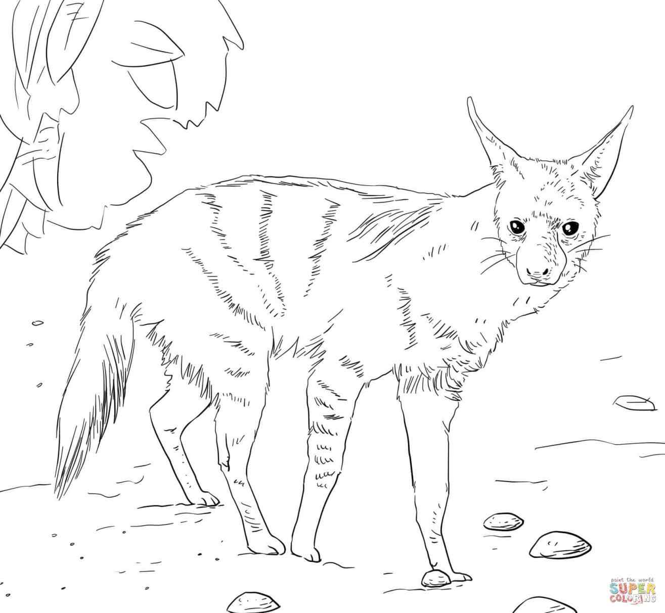 1315x1213 Realistic Lioness Coloring Pages Online Coloring Printable