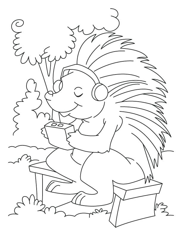 612x792 Porcupine Coloring Page Porcupine Listening To Music Coloring