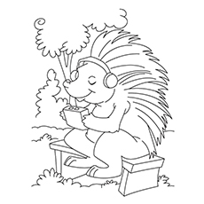 230x230 Top Free Printable Porcupine Coloring Pages Online