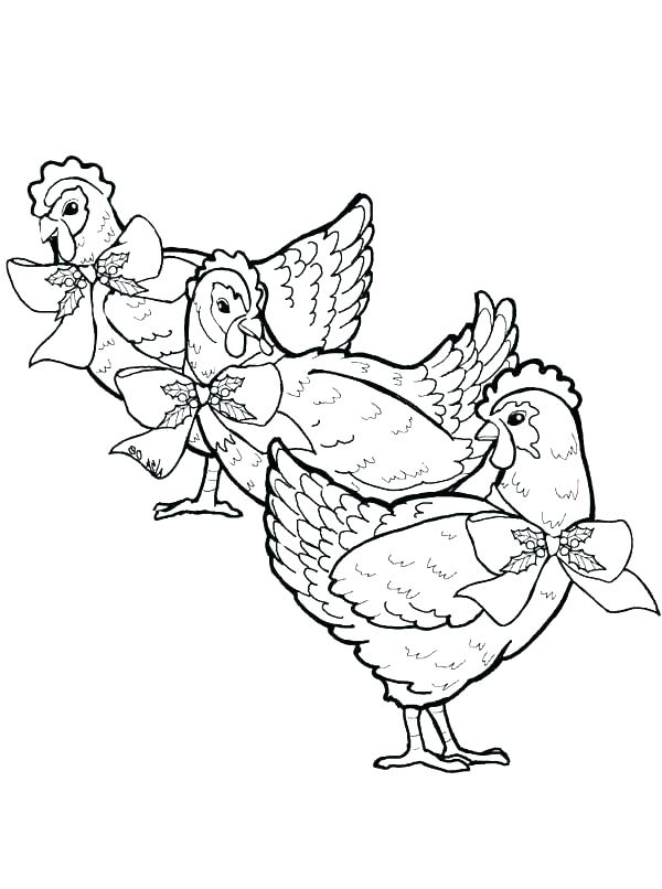 600x806 Hen Coloring Page Chicken C Three French Hens Coloring Page Hen