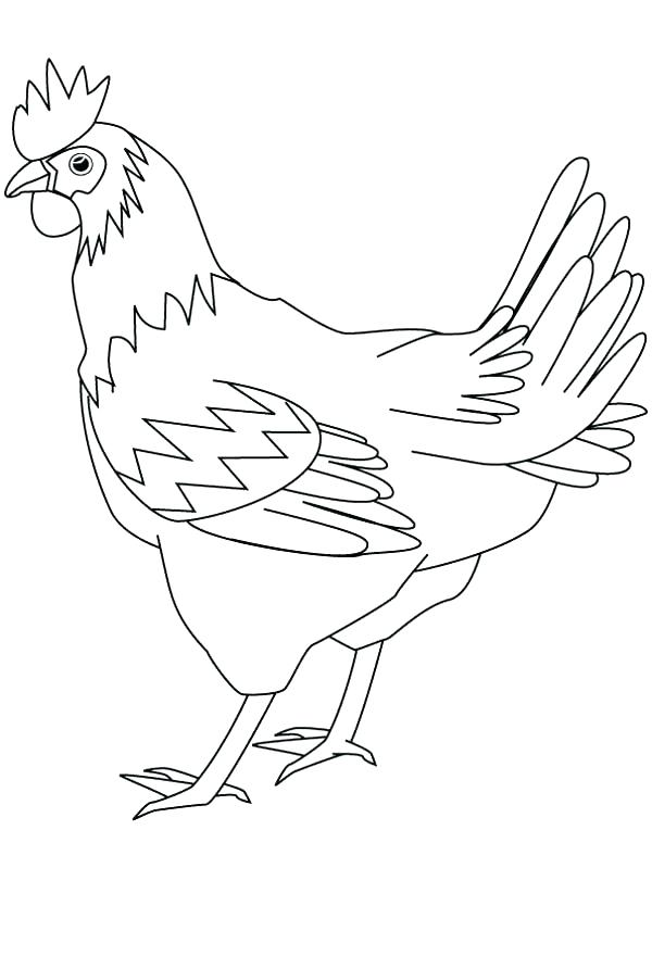 600x880 The Little Red Hen Coloring Page Hen Coloring Page Drawing Healthy