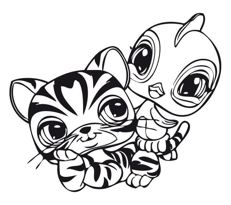 736x656 Cool Idea Little Pet Shop Coloring Pages To Print Printable Cuties