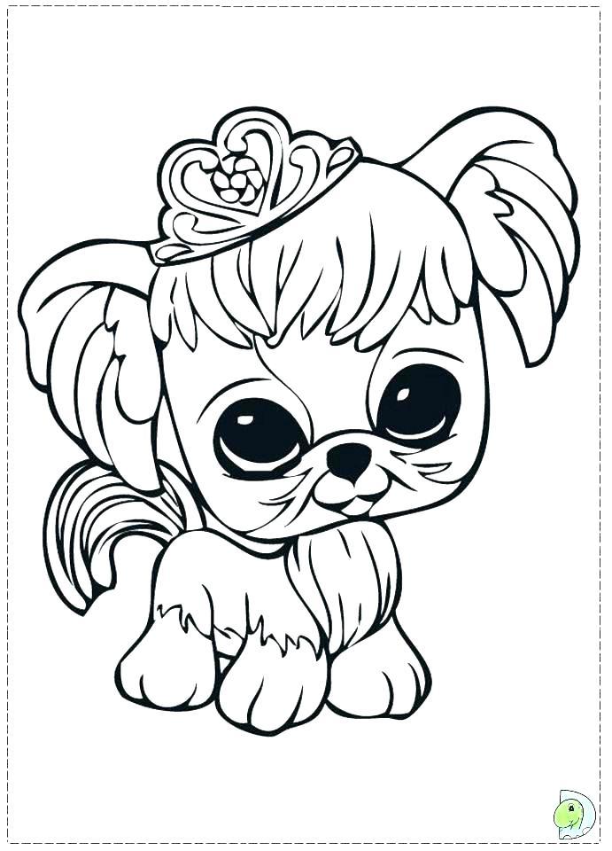 691x960 Pet Shop Coloring Pages Awesome Pet Shop Coloring Pages Free Print