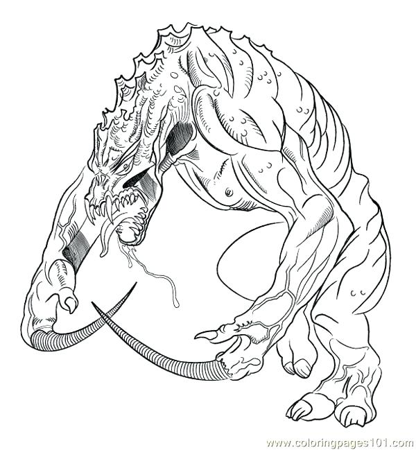 Lizard Coloring Pages At Getdrawings Com Free For Personal