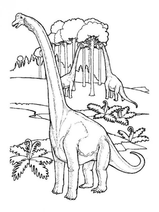 617x822 Printable Argentinosaurus Coloring Pages Logan's First Science