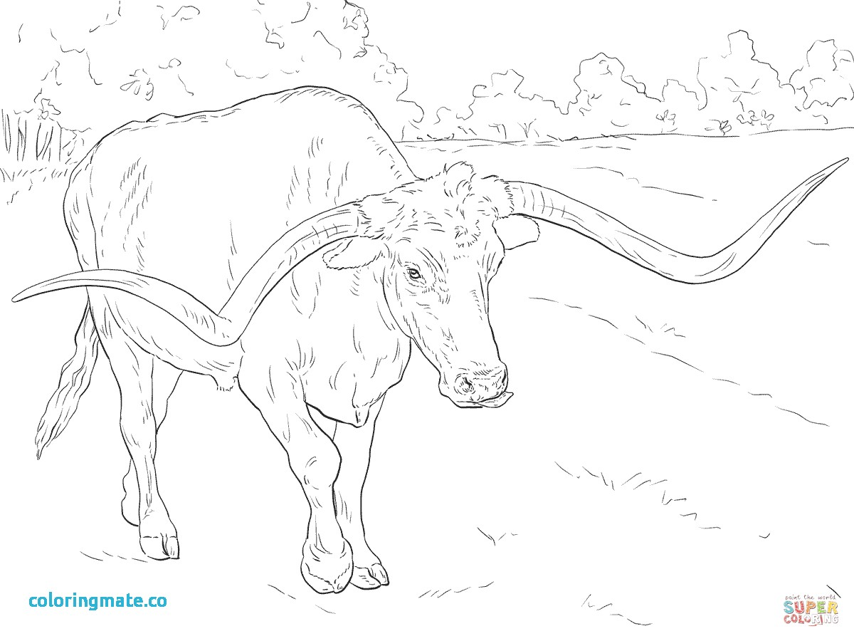 1200x900 Texas Coloring Pages Best Of Texas Flag Coloring Page A Free