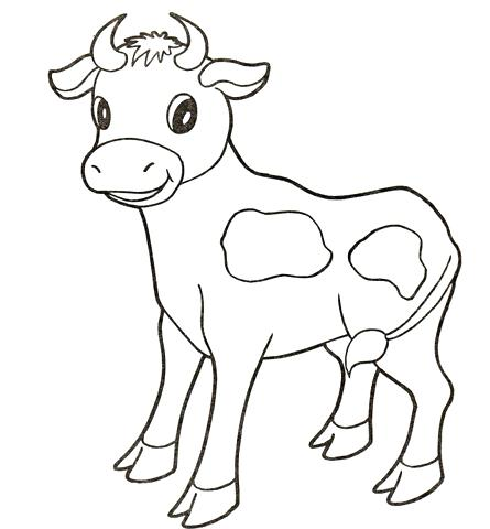 445x480 Texas Longhorns Coloring Pages Bull Calf Baby With Cute Smile Cow