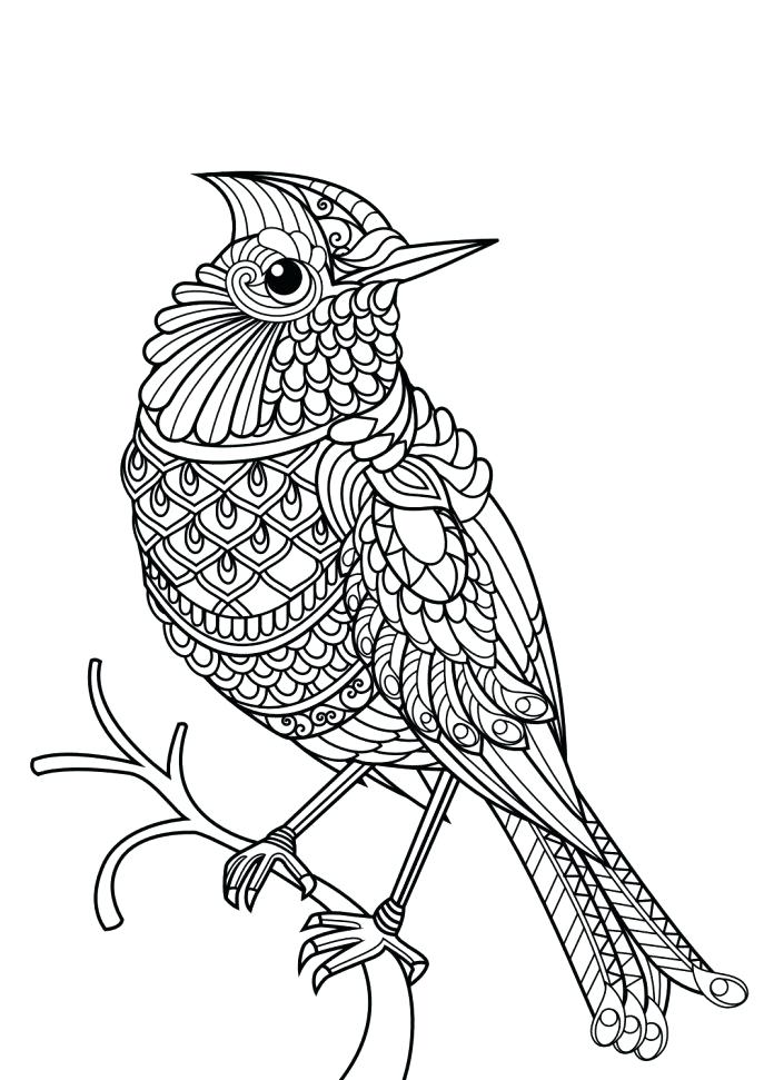 687x971 Lakers Coloring Pages La Kids Coloring Pages Los Angeles Lakers