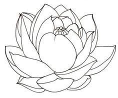 236x196 Free Printable Lotus Coloring Pages For Kids Lotus Flower, Lotus