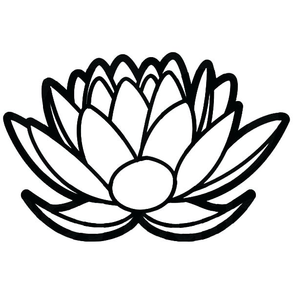 600x627 Ideas Lotus Flower Coloring Page And Lotus Flower Floral Design
