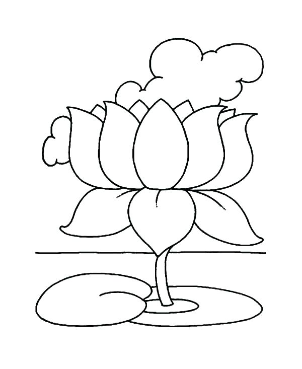 600x733 Lotus Flower Coloring Page Flower Color Pages And Lotus Flower