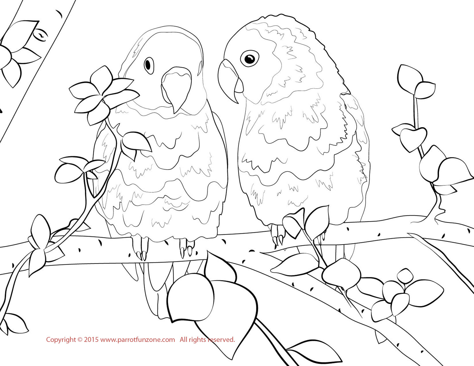 Love Bird Coloring Pages at GetDrawings.com | Free for personal use ...