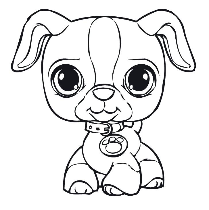 727x731 Littlest Pet Shop Coloring Pages For Kids Free Printable Littlest