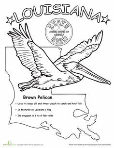 236x305 Louisiana State Outline Coloring Page I Copy The Image And Paste