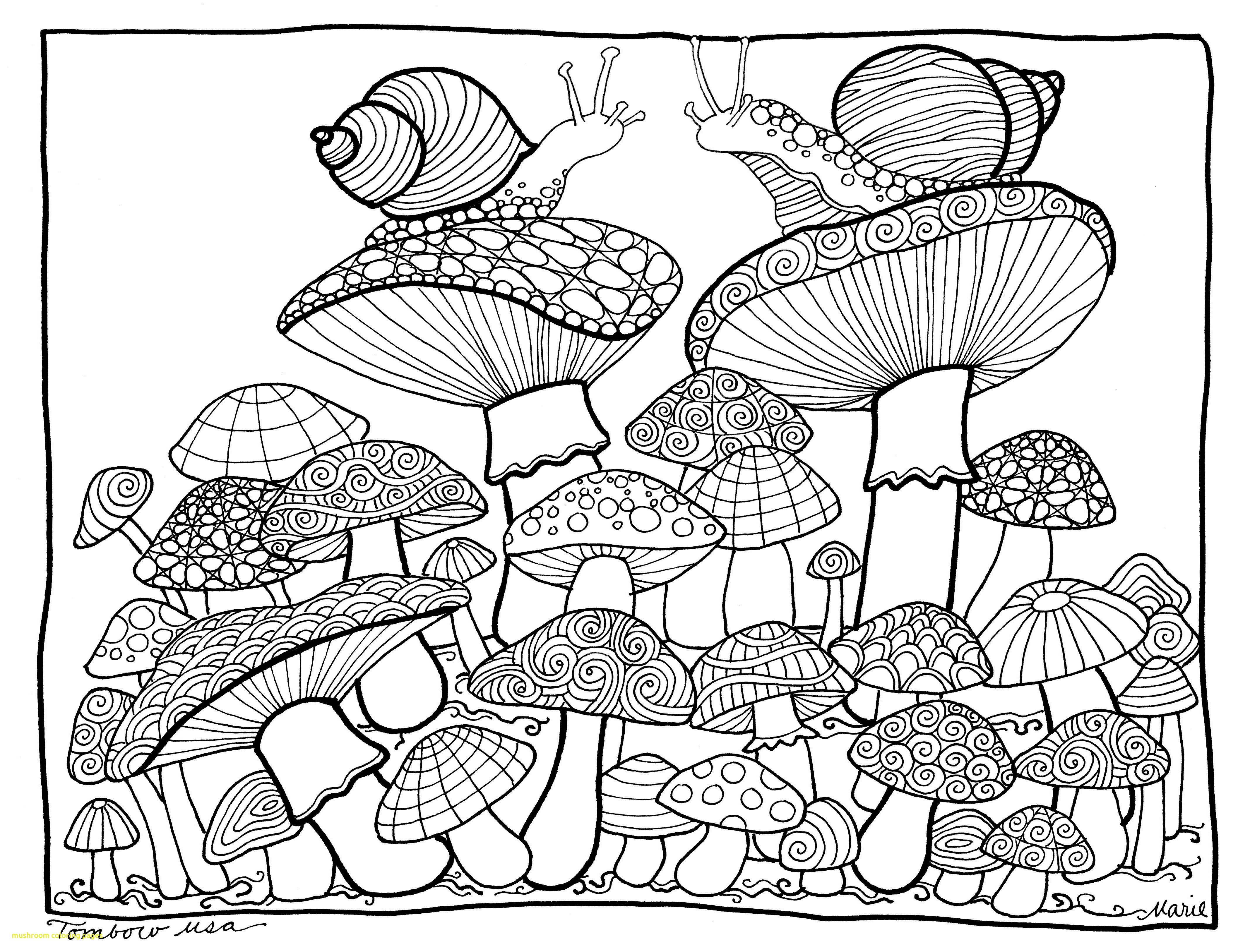 4270x3253 Mushroom Coloring Pages