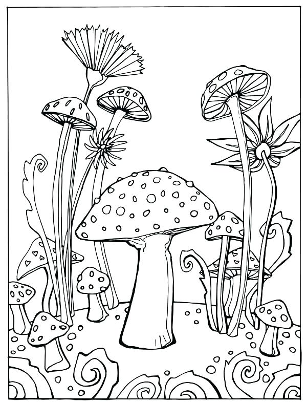 600x787 Mushroom Coloring Pages Coloring Books As Well As Coloring