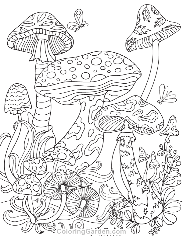 600x776 Free Printable Mushrooms Adult Coloring Page Download It In Pdf