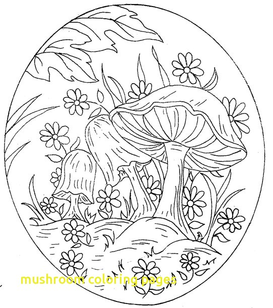 542x611 Mushroom Coloring Pages With Mushroom Mandala Coloring Pages Magic