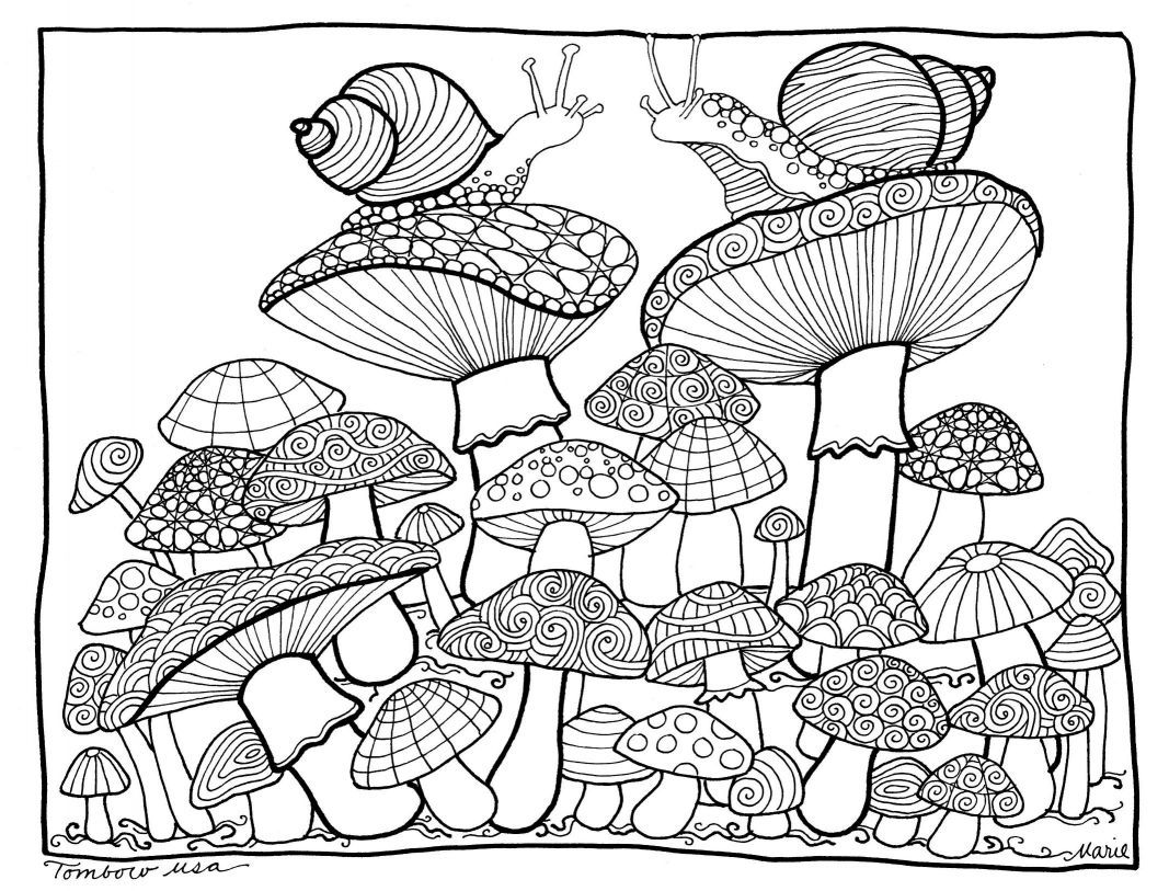 1067x813 Astonishing Psychedelic Mushroom Coloring Pages Printable