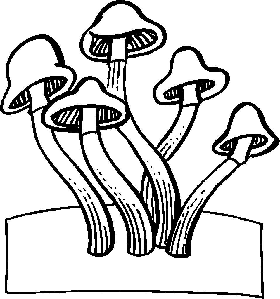 958x1024 Magic Mushroom Coloring Pages