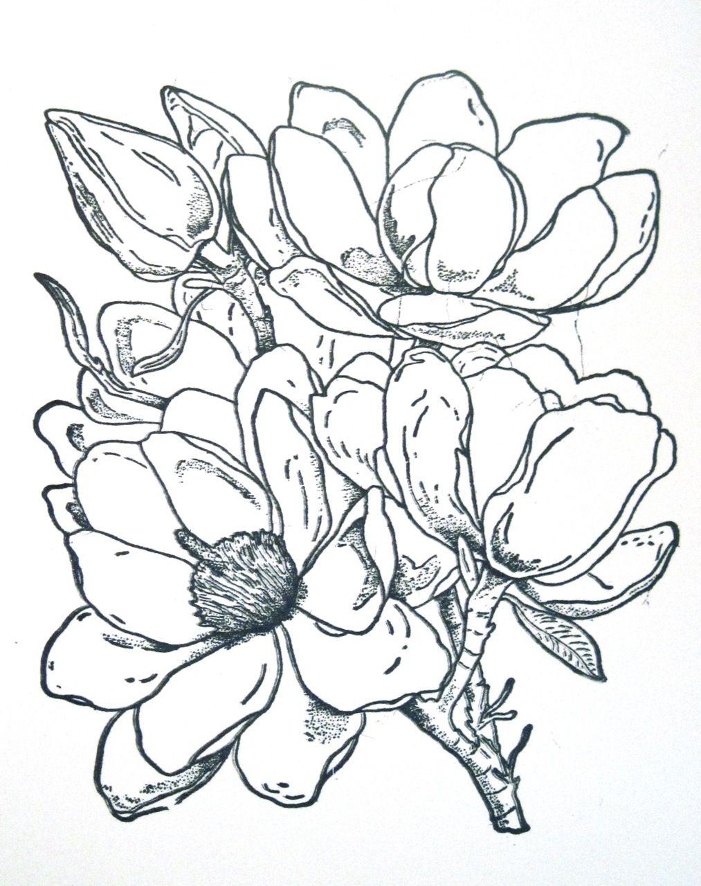 1013x1280 Frantic Stamper Happenings Coloring Corner Magnolia Colored