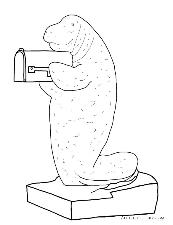 584x756 Manatee Pictures Sea Cow Coloring Page Manatee Mailbox Coloring
